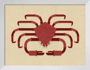 Crab by Alan Dalby