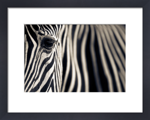 Eye & Stripes by Mario Moreno