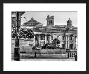 Trafalgar Lions by Assaf Frank