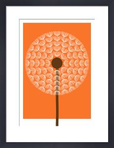 Dandelion I by Simon C Page