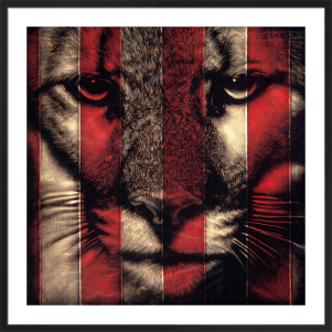 Puma by Pam Glew