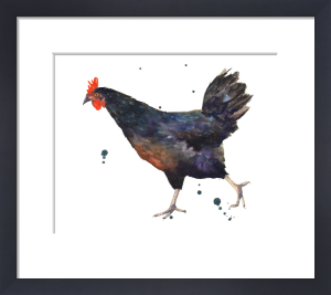 Black Hen by Alison Fennell