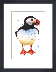 Puffin Patrol by Alison Fennell