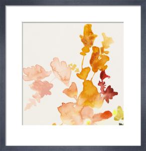 Fruit by Jen Garrido