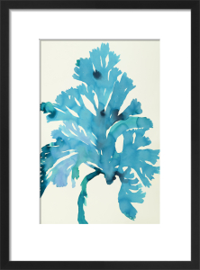 Plants 3 by Susan Hable