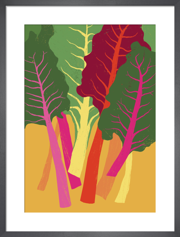 Rainbow Chard Art Print By Ana Zaja Petrak King Mcgaw