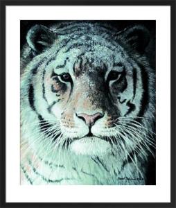 Tiger Portrait by Robert Bateman