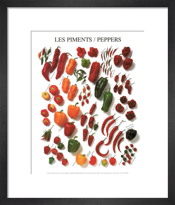 Peppers by Atelier Nouvelles Images