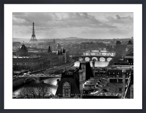 Bridges of Paris by Peter Turnley