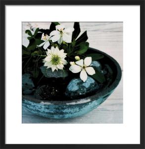 Vasque bleue by Catherine Beyler