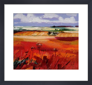 Perthshire Fields by Judith I. Bridgland