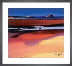 Bass Rock by Pam Carter