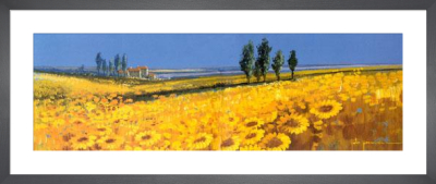 Yellow Field, Tuscany by John Horsewell