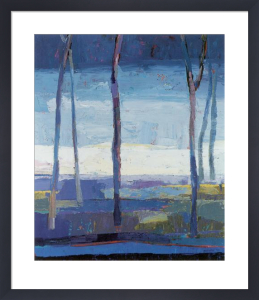 The Clearing by Kirsty Wither