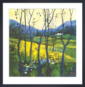 Springtime, Galloway by Davy Brown