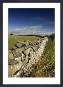Dry Stone Wall - Yorkshire Dales by Richard Osbourne