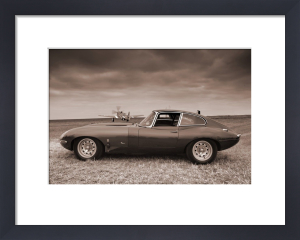 E Type Jaguar by Richard Osbourne