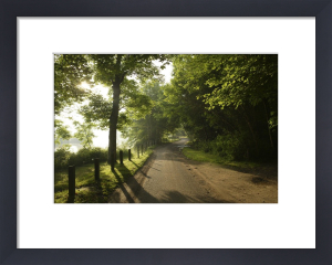 Country Lane, Norfolk - I by Richard Osbourne