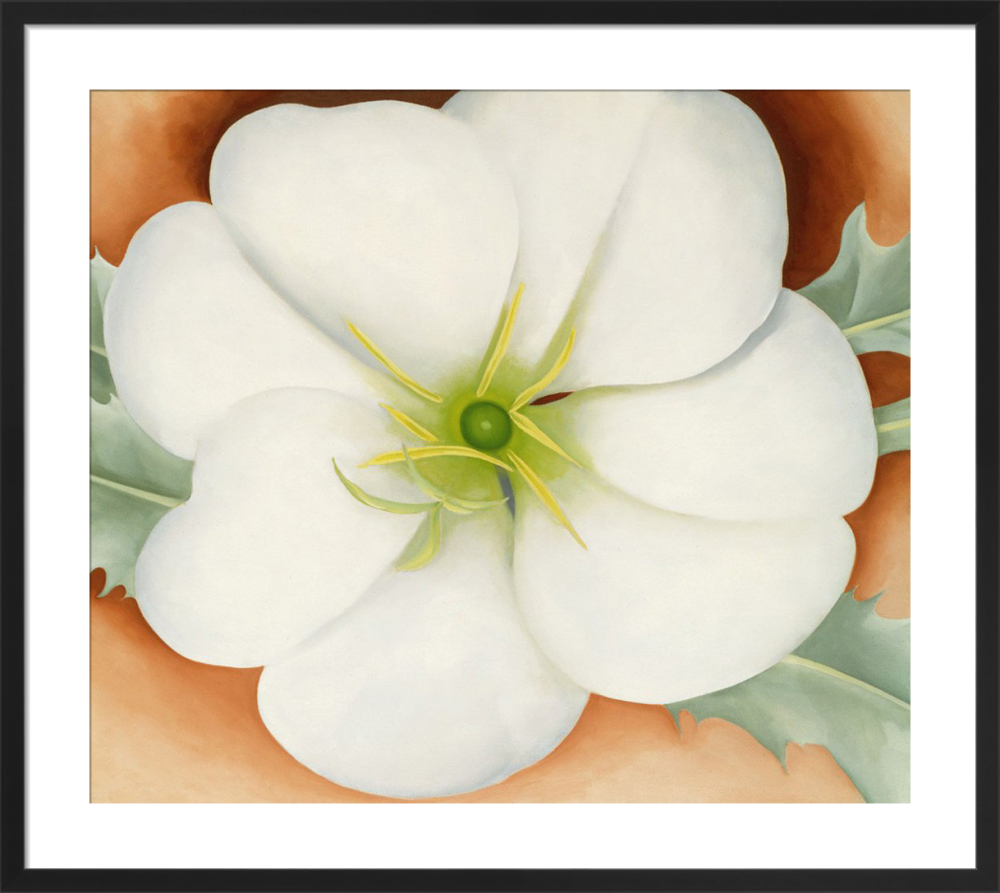 White Flower On Red Earth No 1 Art Print By Georgia Okeeffe