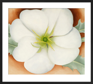 White Flower on Red Earth, No. 1 by Georgia O'Keeffe