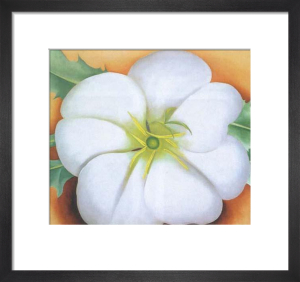 White Flower on Red Earth, No 1 by Georgia O'Keeffe