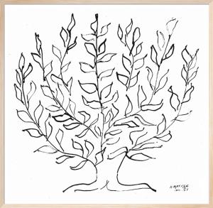 The Plain Tree, 1951 (Silkscreen print) by Henri Matisse