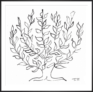 The Plain Tree, 1951 (Silkscreen print) by Henri Matisse