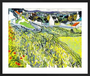 Vineyards at Auvers, 1890 by Vincent Van Gogh