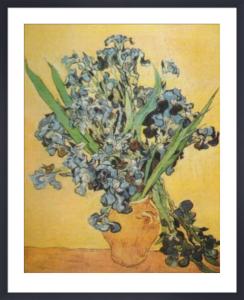 Still Life of Irises by Vincent Van Gogh