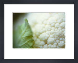 Brassica oleracea botrytis, Cauliflower by Carol Sharp