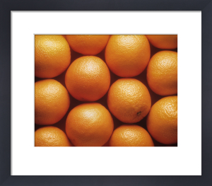 Citrus sinensis, Orange by Jess Koppel