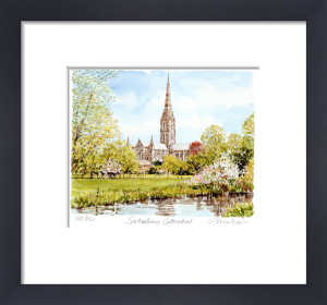 Salisbury - Cathedral by Glyn Martin