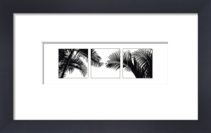 Palm Frond Triptych II by Bill Philip