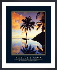 Reflect And Grow by Chris Simpson