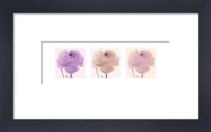 Flourish Triptych by Katja Marzahn