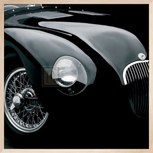 Jaguar C-Type (large) by Retro Series