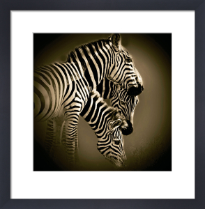 Mirage by Bobbie Goodrich