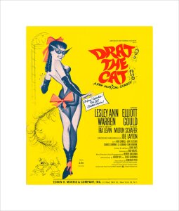 Drat! The Cat! by Anonymous
